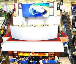 卡塔尔多哈Lulu超市的PH6